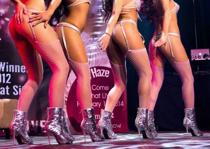 adult-entertainment-expo-vyistavka-dlya-vzroslyih-v-las-vegase