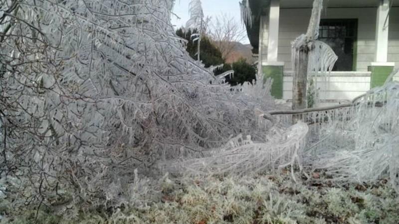 sprinkler-zamerzaet-zimoy