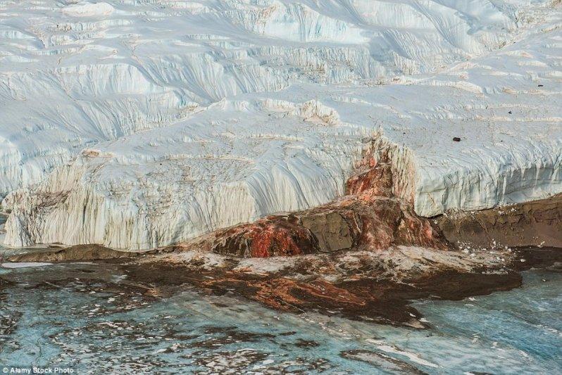 16 изумительных оптических иллюзий от матушки-природы: фотошоп отдыхает