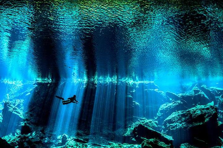Красоты подводного мира_02