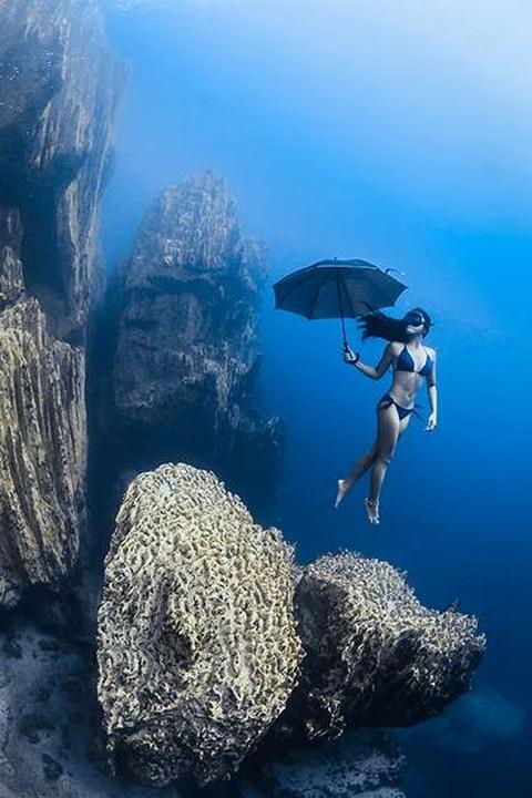 Красоты подводного мира_04