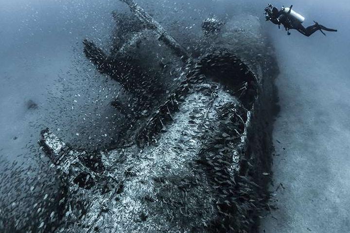 Красоты подводного мира_08