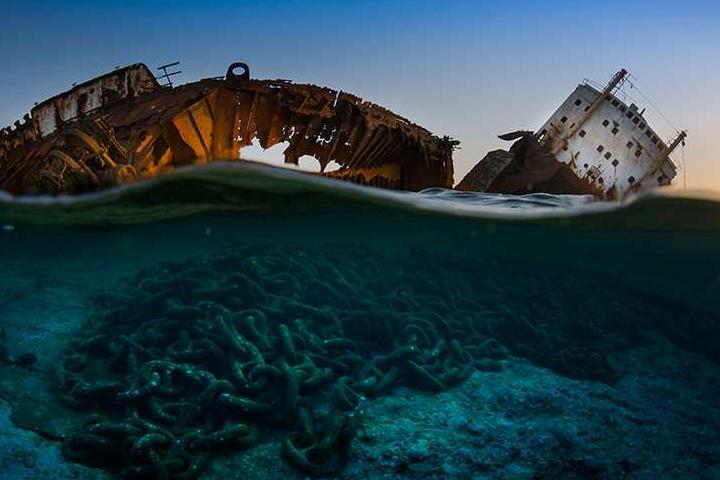 Красоты подводного мира_14