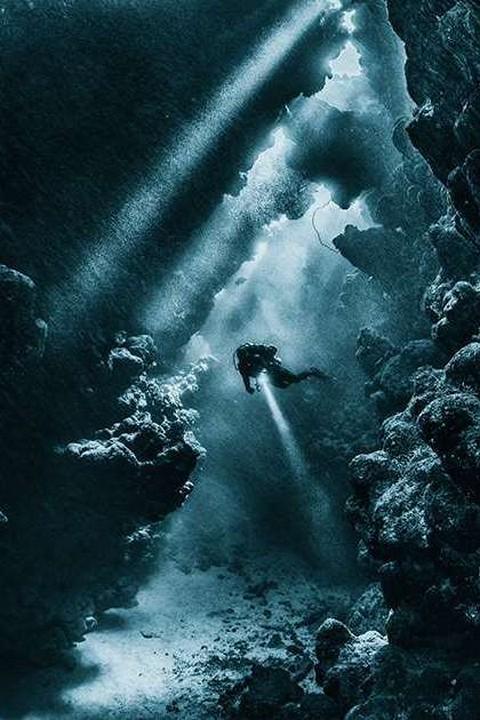 Красоты подводного мира_21