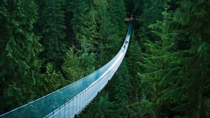 Самый протяженный подвесной мост в Канаде.