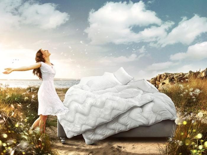 Одеяло и подушка. Автор: Anil Saxsena.