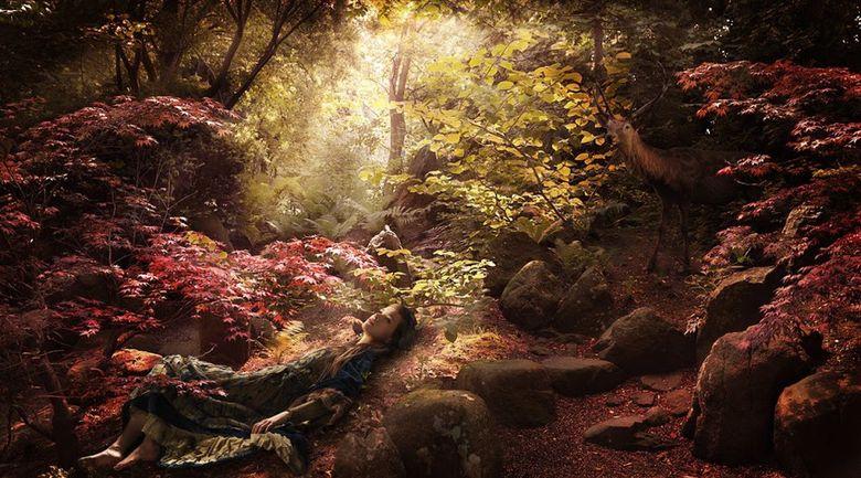 волшебный мир фотохудожника Ronaldа Schmetsа 08