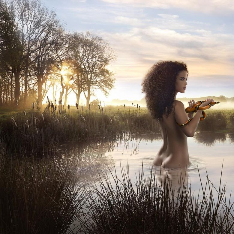 волшебный мир фотохудожника Ronaldа Schmetsа 13
