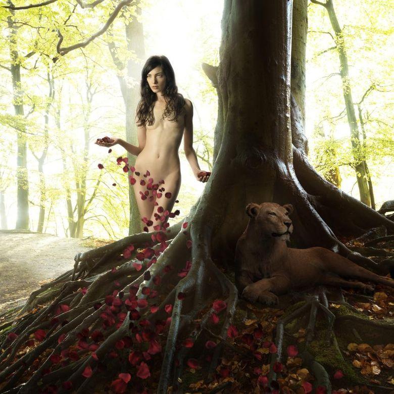 волшебный мир фотохудожника Ronaldа Schmetsа 18