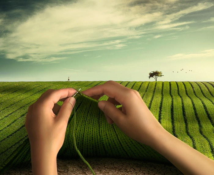 Я свяжу зелёное поле. Автор: Anil Saxsena.