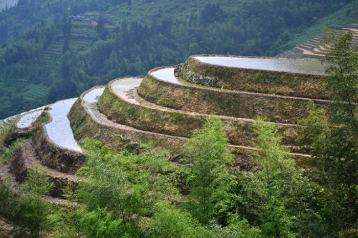 Высоко в горах Гуйлинь.