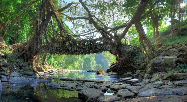 Природные мосты планеты 245