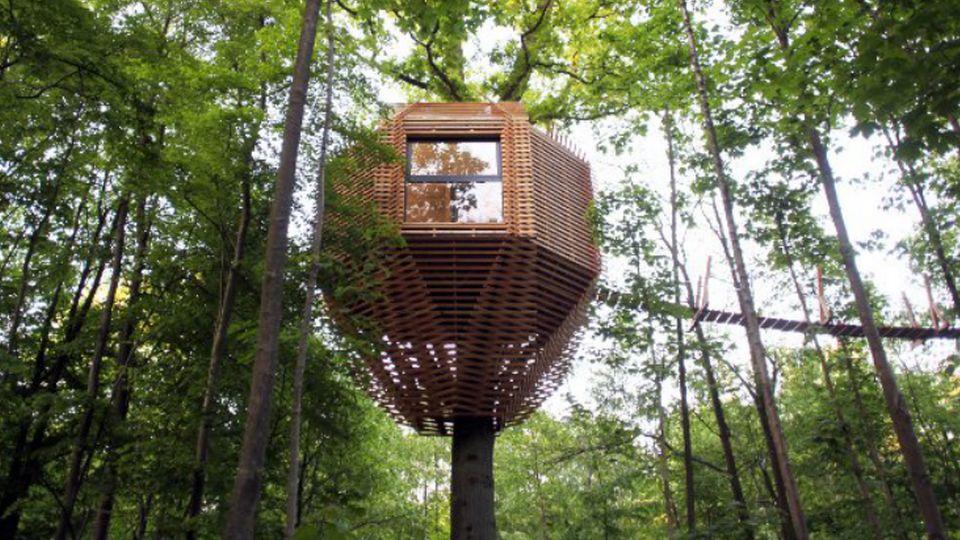 Raray Treehouse, Франция