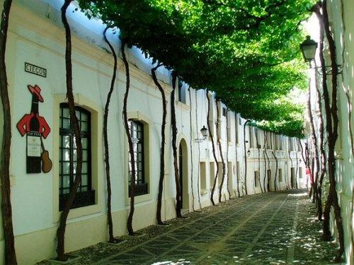 Улица в городе Херес-де-ла-Фронтера (Jerez), Испания