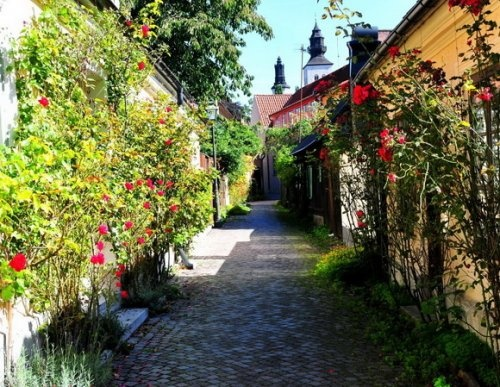 Рыбная Аллея (Fiskargränd), город Висбю (Visby), Швеция