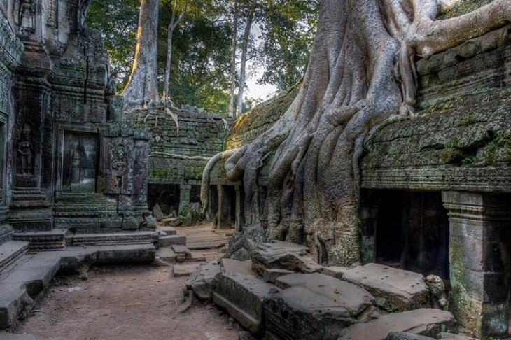 Храм Та Прохм, Сиемреап, Камбоджа