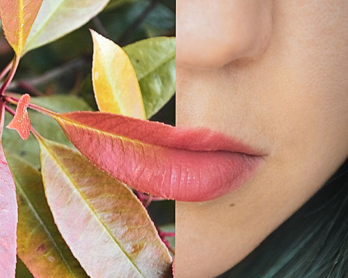 Красивое сочетание цвета осеннего листа и мягких нежных губ.