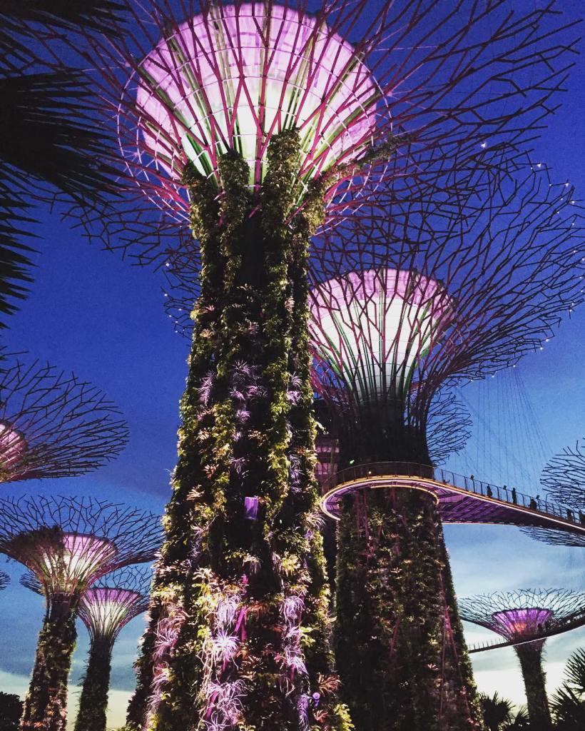 Металлические деревья, сады у залива, Сингапур