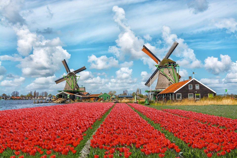 ветряные мельницы, Голландия