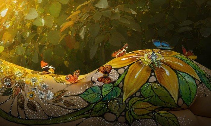 Бабочки в солнечных лучах. Автор: Duong Quoc Dinh.