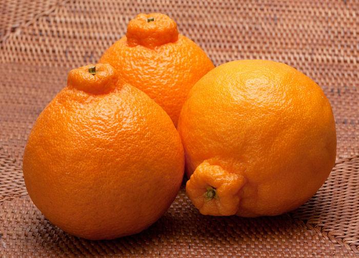 Декопан - очень сладкий плод без косточек.