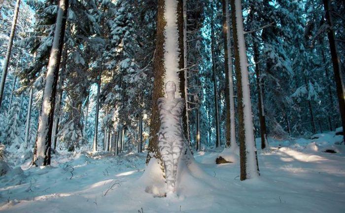 Зимний лес. Автор: Vilija Vitkute.