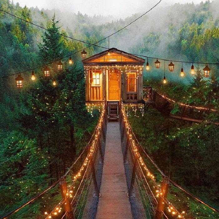 Сказочный домик, где живет веселый и бесшабашный Питер Пэн и дети, которые верят в чудеса.