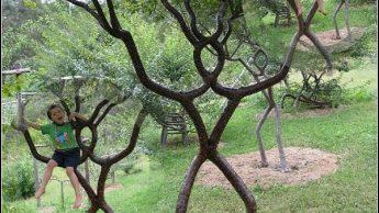 Живые деревянные скульптуры