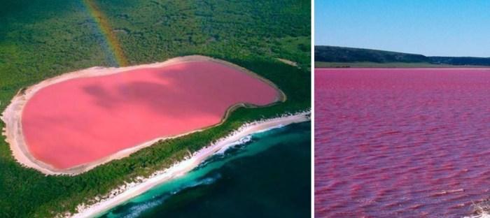 Озеро Хиллер, Австралия. / Фото: www.atlasobscura.com