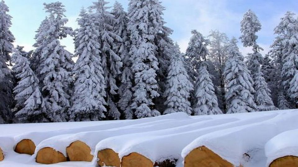 Прелесть зимы 01