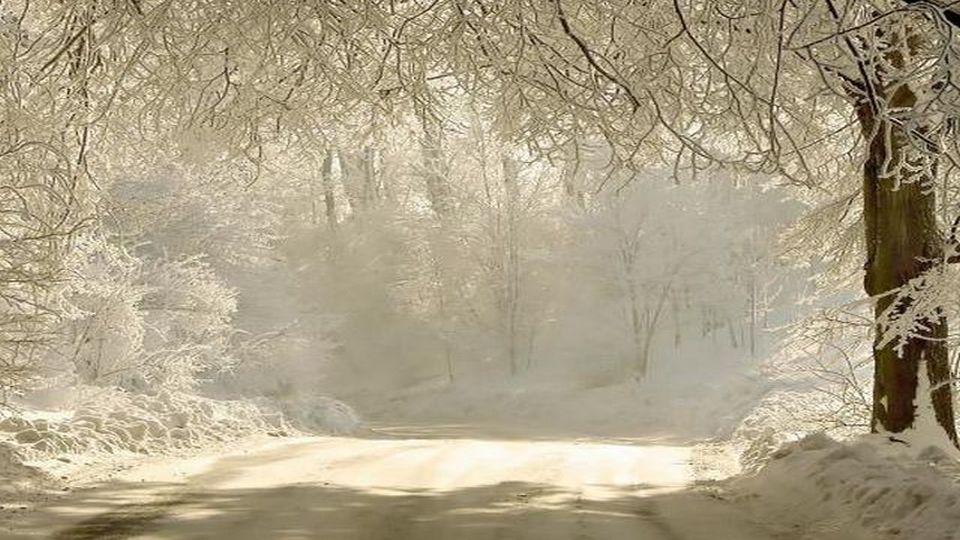 Прелесть зимы 05