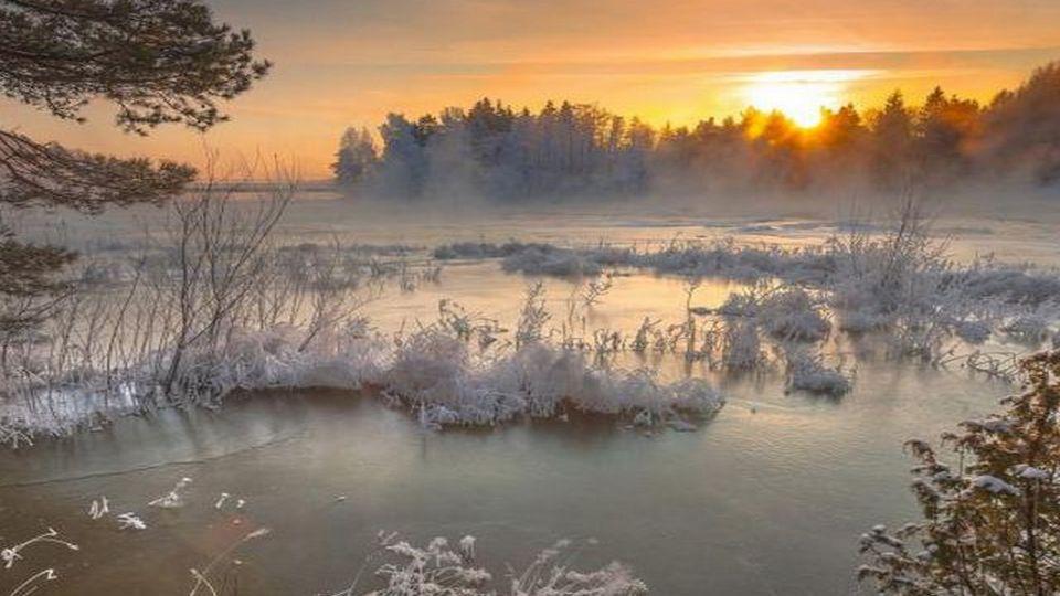Прелесть зимы 11