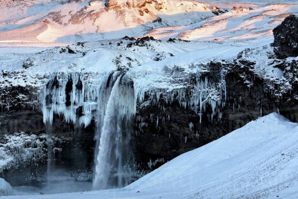 Прелесть зимы 16