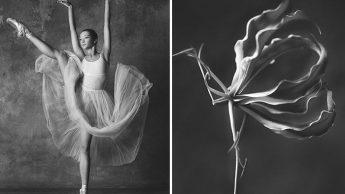 Фотография символизирует хрупкость цветка, женской красоты и карьеры балерины.