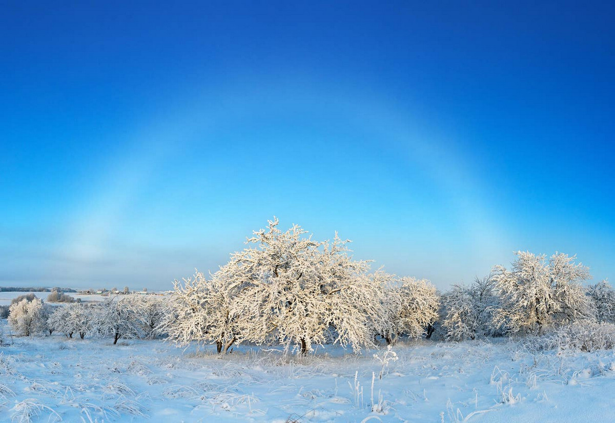Белая туманная дуга над зимним садом. Карелия, Россия. Автор: Елена Белозорова.
