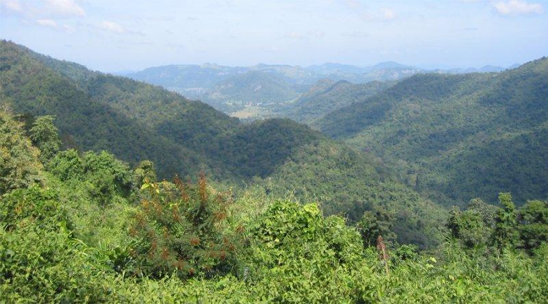 Северный лесной массив, Мьянма